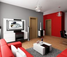 beauty colour schemed for apartment decorating ideas red white and black
