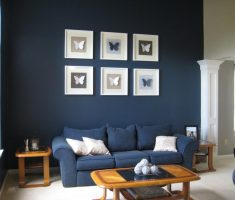 blue sofa and wall for blue living room decor and furniture