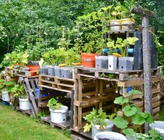 creative wooden stacking pots for small kitchen garden