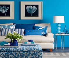 enchanting blue living room wall and pillow design