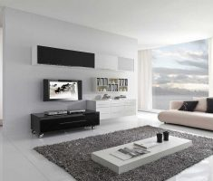 enchanting modern interior design apartment with black white rug
