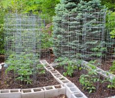 fencing wire for small kitchen garden
