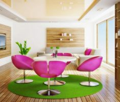 stylish modern interior design with pink chair and round circular green rug