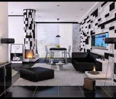 unique black and white modern living room design