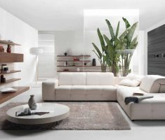 white and grey modern interior design with plant floral decoration
