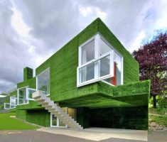 amazing green wall with natural wall design for unique modern house design