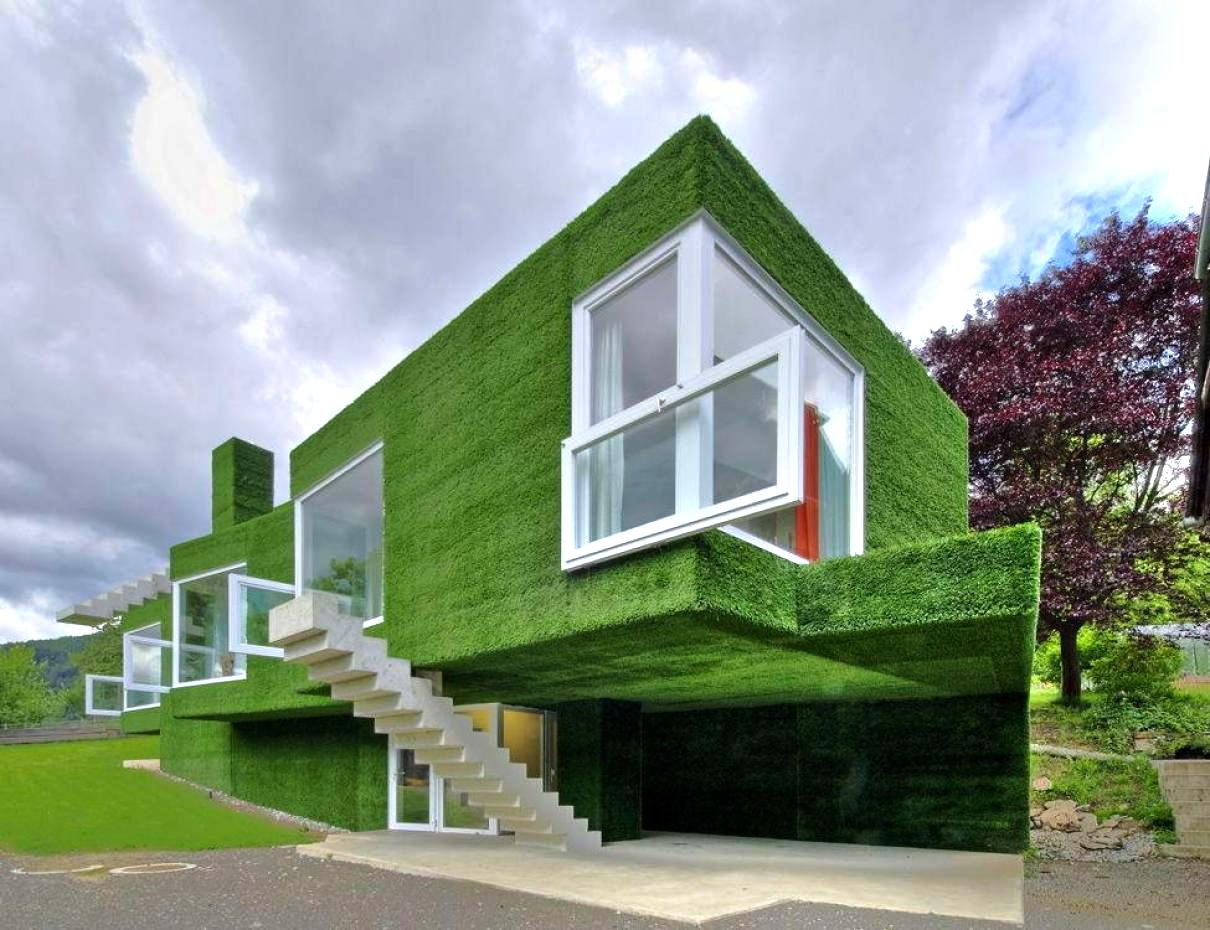 Amazing Green Wall With Natural Wall Design For Unique