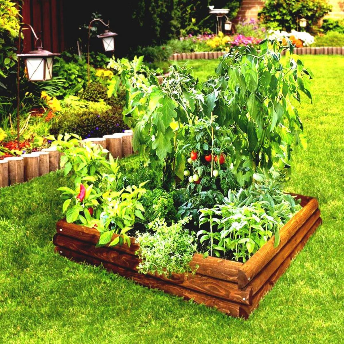 Enchanting small kitchen garden on backyard for Small kitchen garden