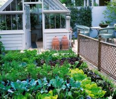 wondering small kitchen garden ideas for small space