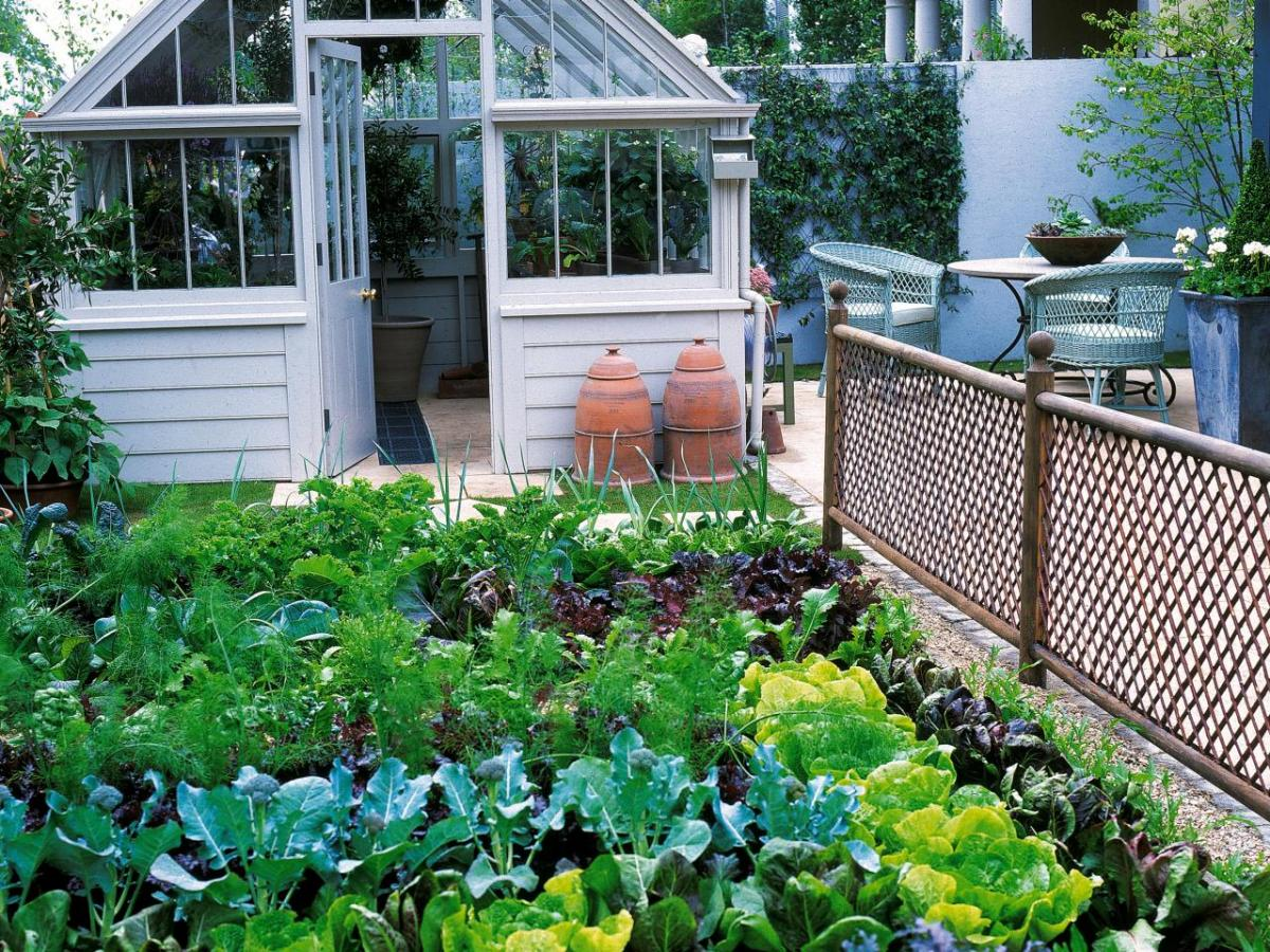 How To Make Small Kitchen Garden Ideas