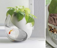 amazing modern garden pots with small tiny aquarium