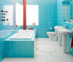 blue and white bathroom tiles theme colors