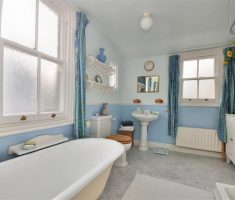 blue and white traditional bathroom designs