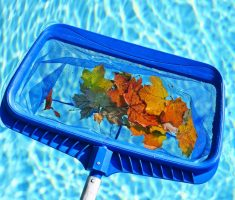 cleaning leaves maintenance swimming pool