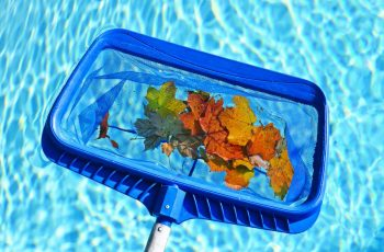 cleaning-leaves-maintenance-swimming-pool