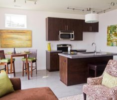 cool brown modern small kitchen apartment with living room in one place