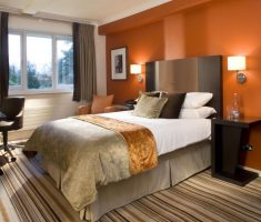 cozy master bedrooms decoration warm orange colkor and strppes carpet flooring