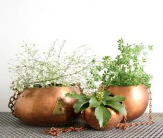 cute copper modern garden pots for indoor decor