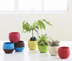cute and cheerfull modern garden pots for indoor decorations