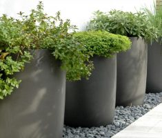 fabulous modern garden pots with grey cement schemed