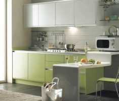 fresh modern small kitchen with green lime and white theme