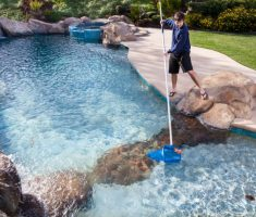 maintenance swimming pool cleaning leaves