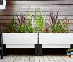 minimalist modern garden pots for outdoor and indoor room