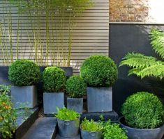 modern garden pots for oudoor with cement materials