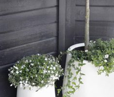 narrow ceramic modern garden pots