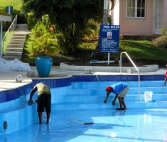 rub and clean moss for maintenance swimming pool