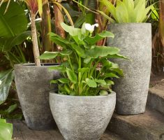 rustic modern garden pots with carving cements