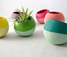 small cute modern garden pots indoor room