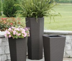 small modern garden pots for indoor rooms