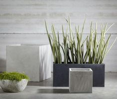 small and modern garden pots indoor room