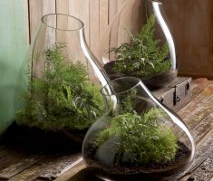 unique glass modern garden pots for indoor rooms