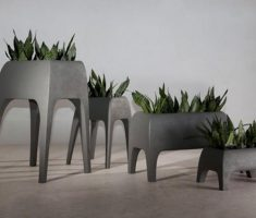 unique modern garden pots planter for sansivera