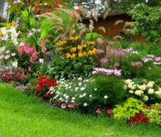 beautiful colorful landscaping ideas for front yard with flowers