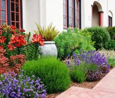 beautiful landscaping ideas for front yard no grass