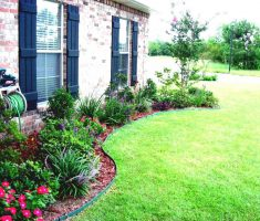 charming colorful landscaping ideas for front yard flowers
