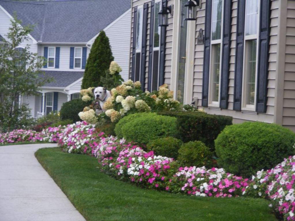 Colorful landscaping ideas for front yard with flowers for Front lawn designs