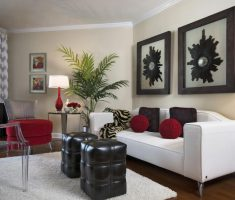 elegant-small-space-decoration-living-room-with-twin-photo-frame-decor-and-luxurious-white-sofa
