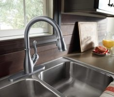 elegant delta kitchen faucets pull down