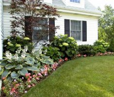landscaping ideas for front yard of a ranch style house with flowers