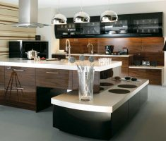 luxurious ultra modern kitchen theme and cabinet appliance