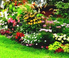 natural flowers colorful landscaping ideas for front yard