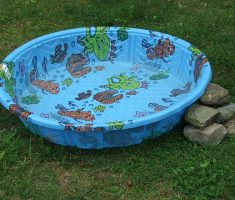 small hard plastic garden pool with animal sea
