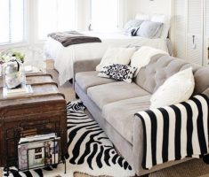white and black small livng room for small space decoration with zebra rug carpet