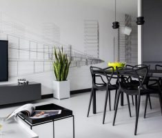 Alluring Modern Black and White Apartment Studio
