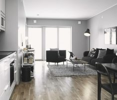 Amusing Black and White Apartment Studio