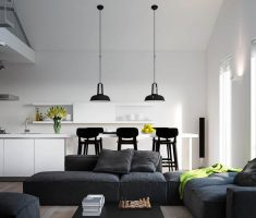 Black and White Apartment Kitchen with Living Room Stuido Design Interior
